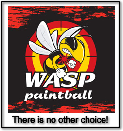 wasp paintball