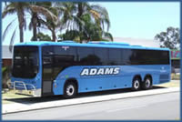 Adam Coachlines